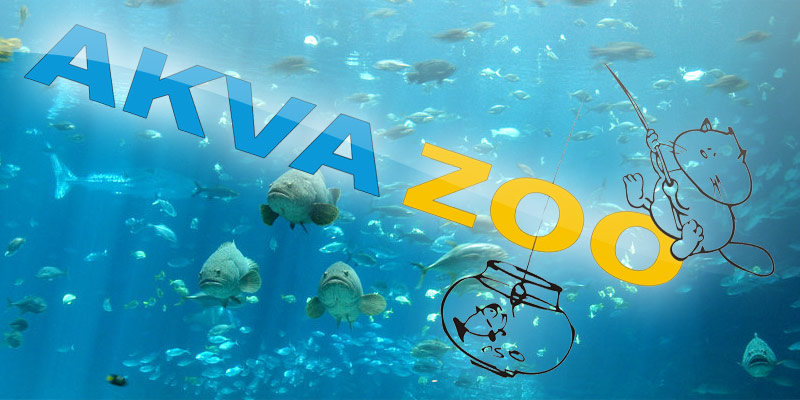 akvazoo_aquariums_pets_1.jpg