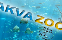 Akvazoo - aquariumistics and zoology products