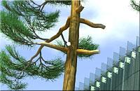 Eglės sapnas - 3D vizualization