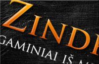 """""""Zindra"""" logo"""